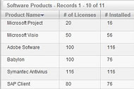 Software Product and License Management